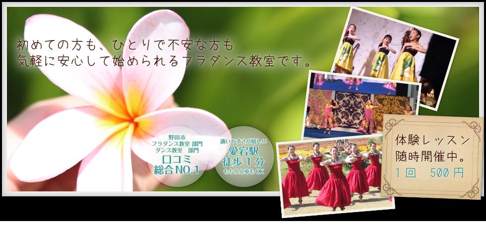 野田市のフラダンス教室は「フラ ハーラウ オ ラウレア」 メインイメージ